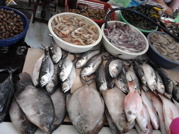 ikan segar di pasar pantai depok yogyakarta