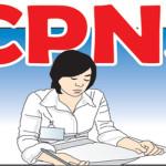 pendaftaran cpns-2014
