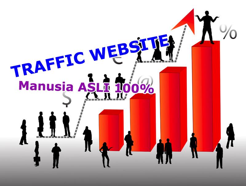Jasa Traffic Pengunjung Website MANUSIA ASLI 100% CEPAT